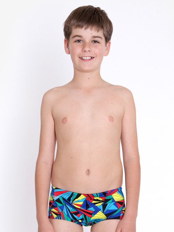 Speedo Labyrinth Boys Trunks